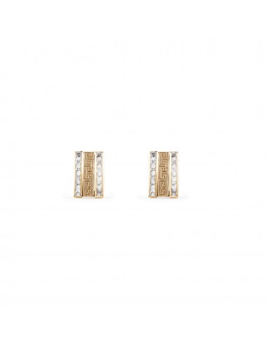 9ct Yellow Children's zirconia Earrings