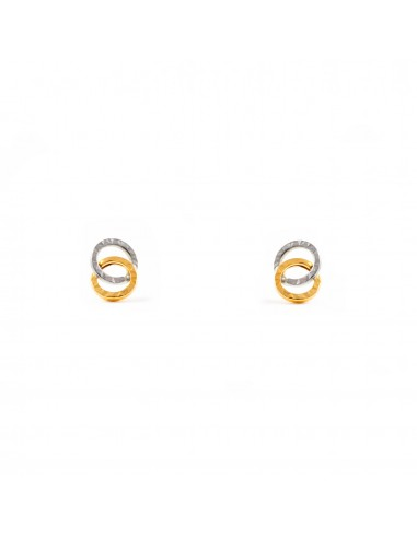 18ct Two color gold round Earrings