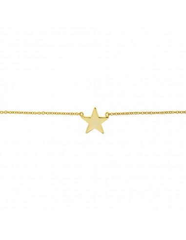 Collar Plata Dorada con Estrella